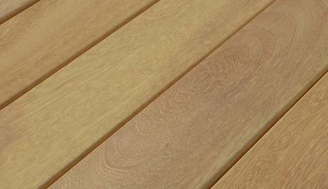 Iroko Decking Exmouth